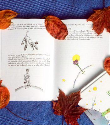 Oblíbené knihy | Které mě zaujaly nejvíc?